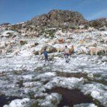 Región Apurímac tendrá presencia de nieve en localidades superiores a los 4,000 msnm
