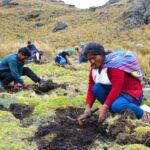 Conmemoración de la plantación de un millón de árboles en un día - Apurímac verde