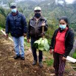 Proyecto de apoyo a la agricultura familiar en Apurímac con grandes resultados