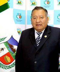 Ing. Sergio Alejandro Meza Alarcón