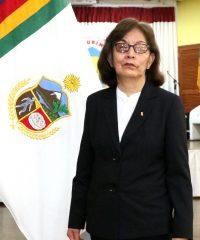 Sra. Zulma Sofia Castillo Tecsi
