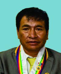 Pascual Huamanñahui Alegria