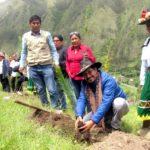 Gobierno Regional reinicia programa de Bosques Manejados